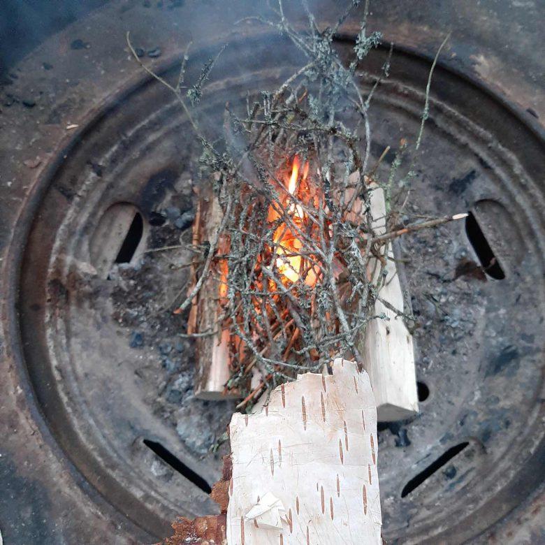 birch bark kindling