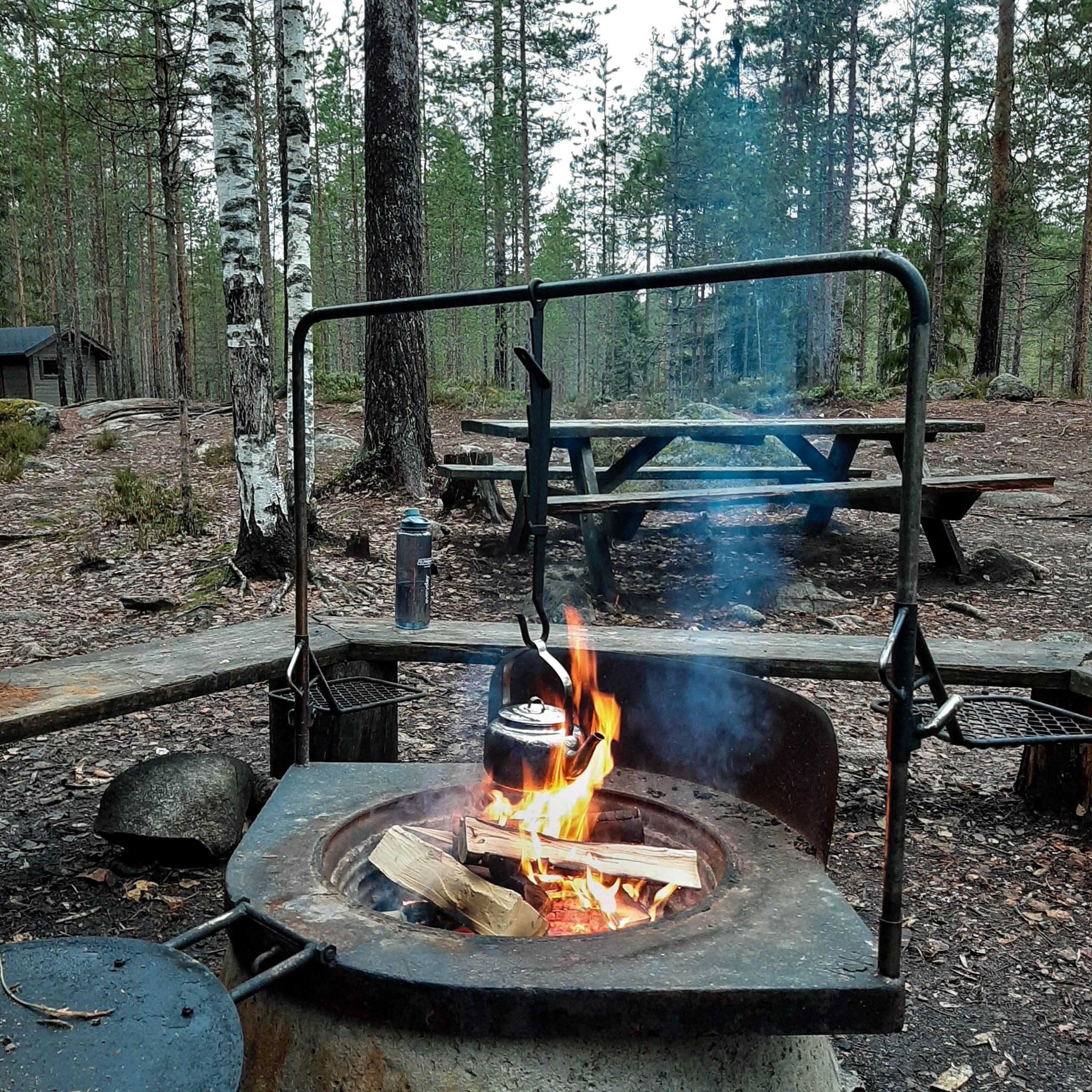 How to build a campfire 101