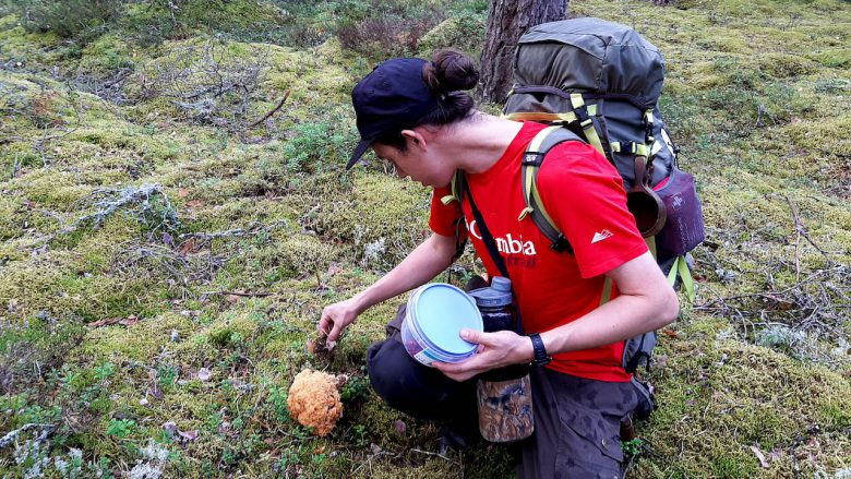 guide picking up mushroom in mossy ground in a national park