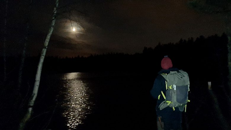 guide discovering nature after dark
