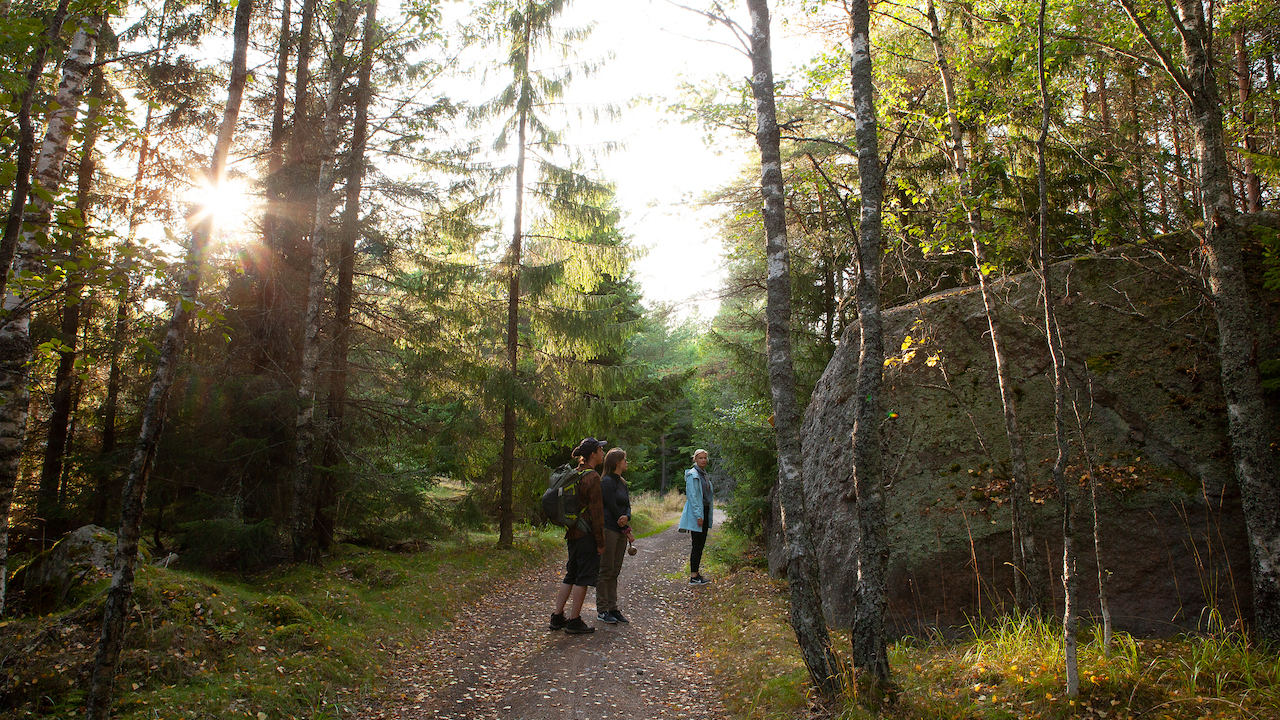 poeple walking in a forest path in finnish archipelago