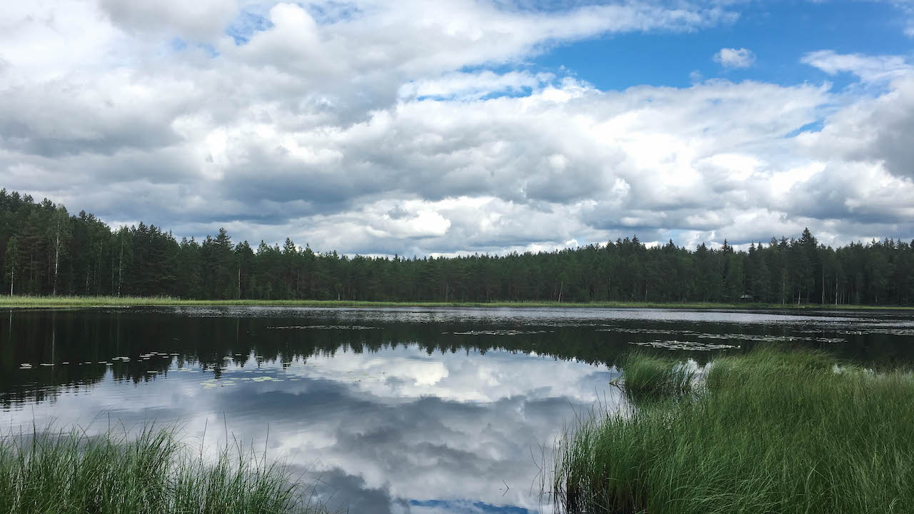 lake view in a finnish national park