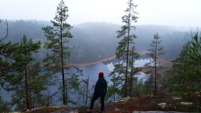 woman in a day trip to a finnish national park looking for over a lake