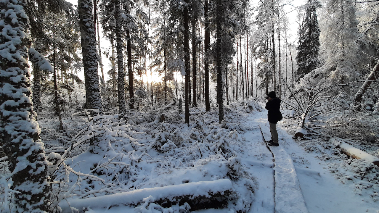 a man taking pictures in a winter forest