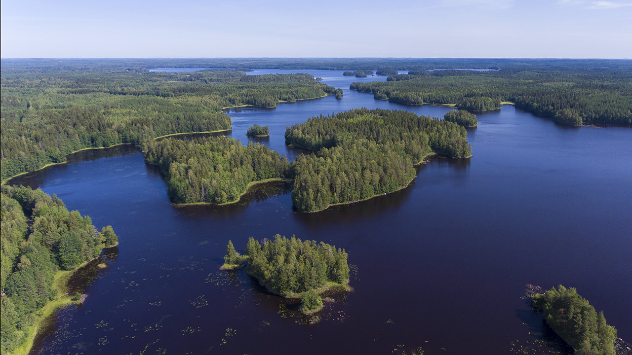 aerial view of taiga forest and blue lake