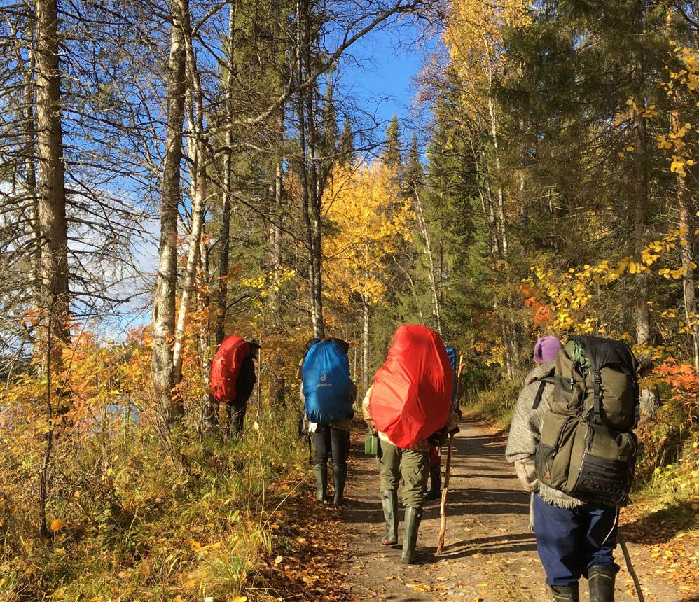 hikers in taiga forest with backpacks on