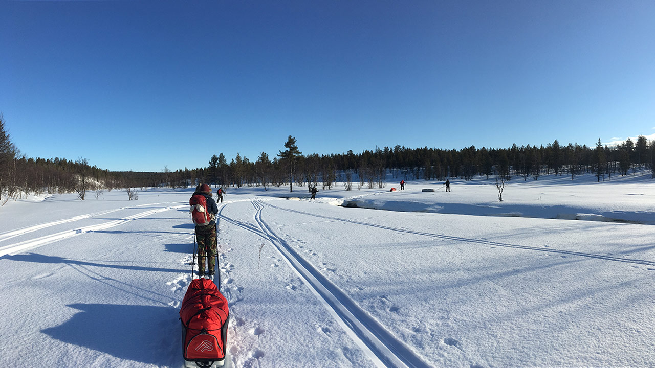 Snowy winter wonderland photo in lapland with ski trails and skier