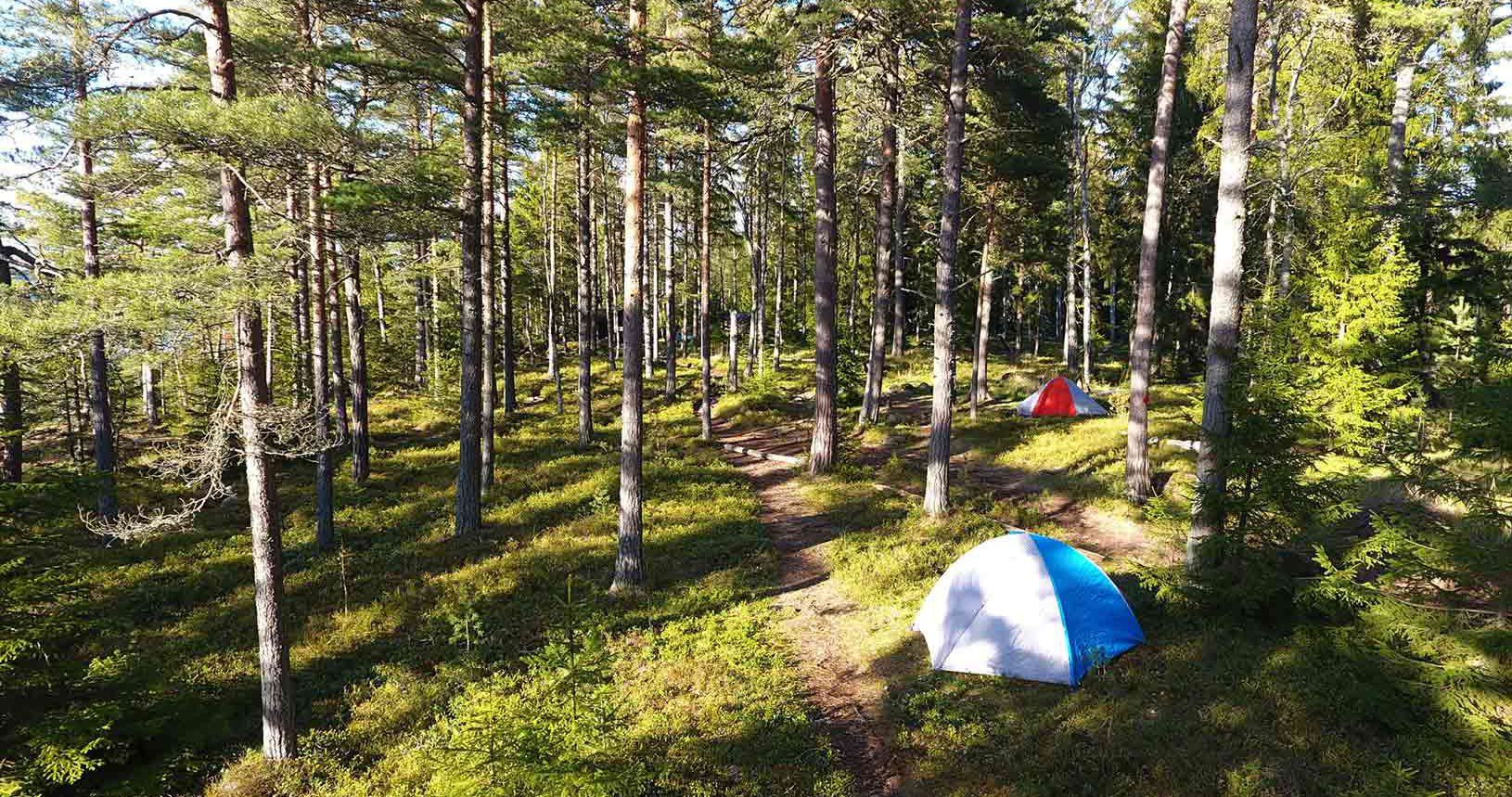 Tent set up in Finnish forest