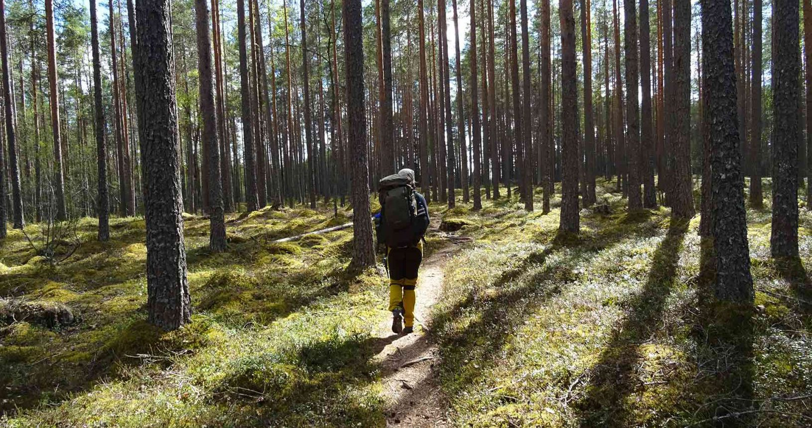 a woman hiking in finnish national park