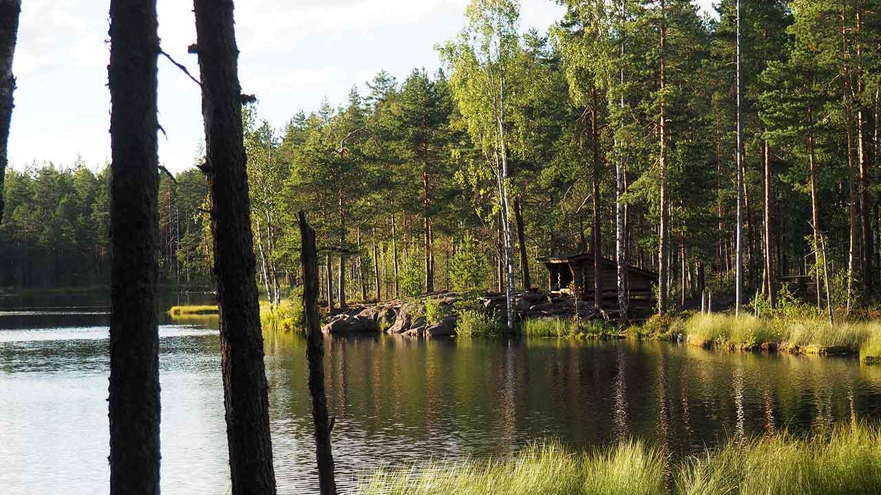 laavu by a lake in isojarvi national park finland
