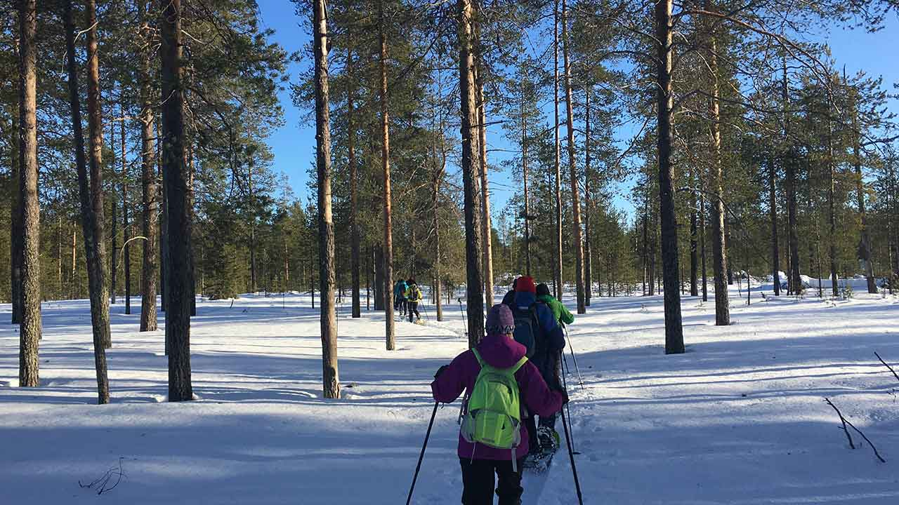 people in snowshoe tour in hossa national park finland