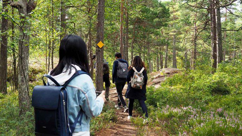 people walking on a finnish archipelago forest