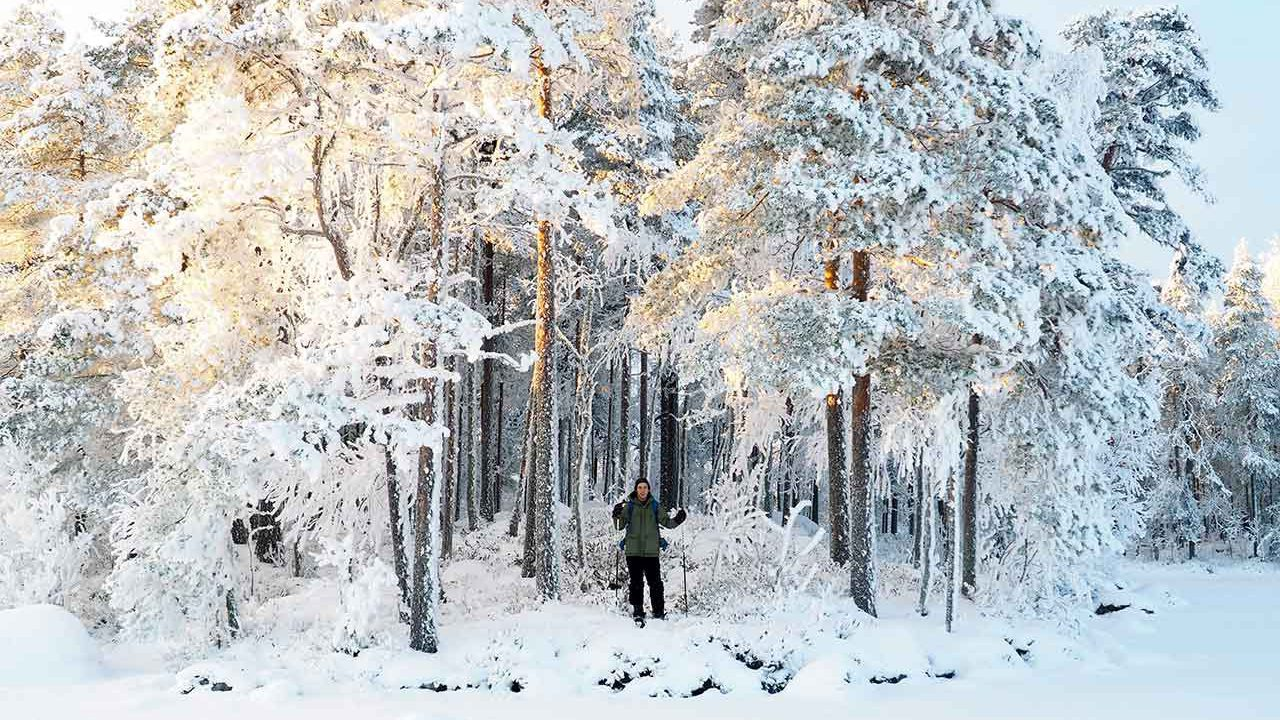 guide in a snowy forest in finland