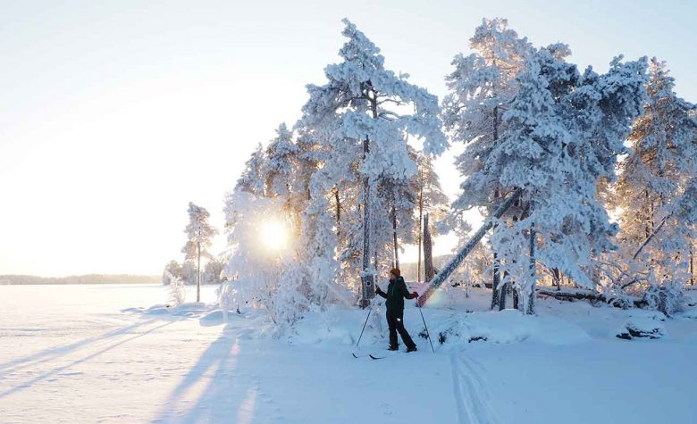 guided ski trip in winter wonderland