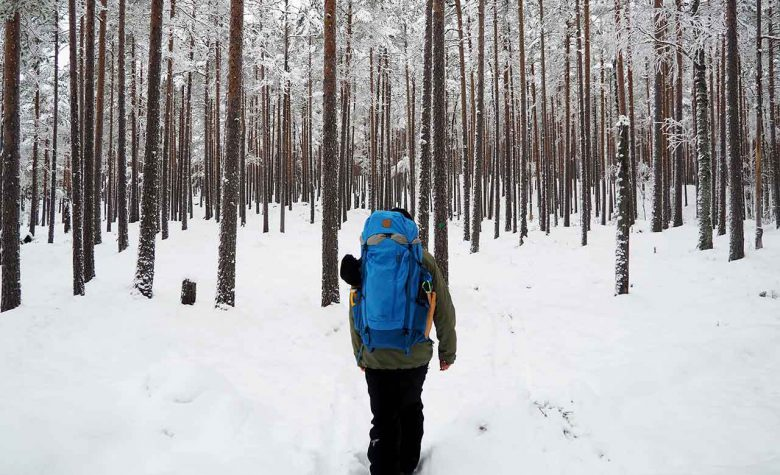 guide walking in a winter forest finland