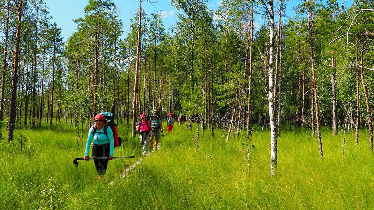 hiking trip in finland national park